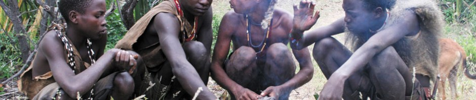 The Hadza people of Tanzania, such as these young men who are roasting birds they have caught, rely on hunting and gathering to obtain most of their food. By studying Hadza social networks, Apicella et al.4 illuminate the population dynamics that underpin the evolution of human cooperation. PHOTOSTOCK-ISRAEL/ALAMY