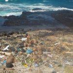 debris on Tutuila beach