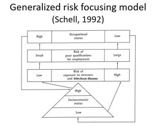 risk focusing model