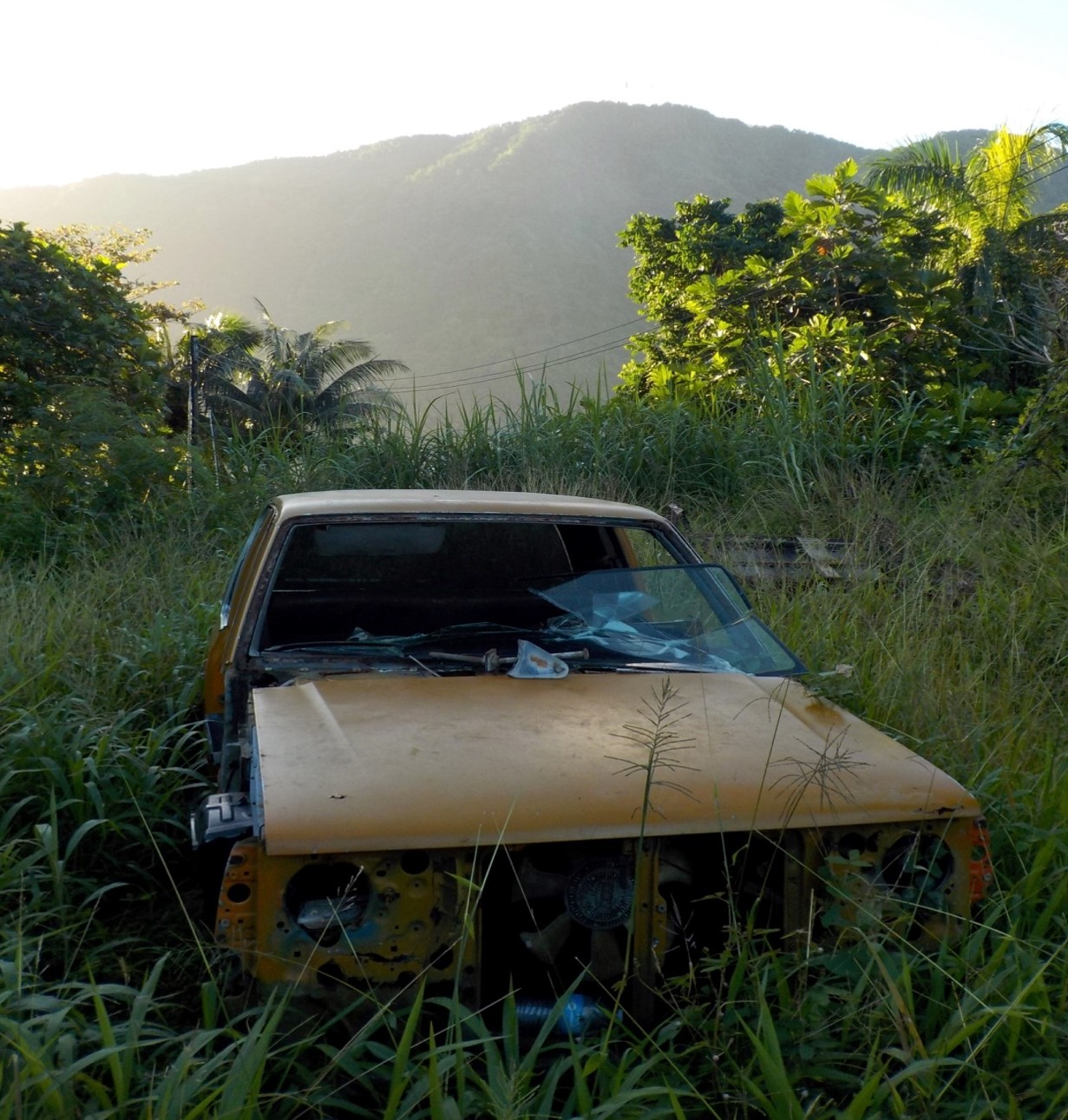 rusted car in Tutuila